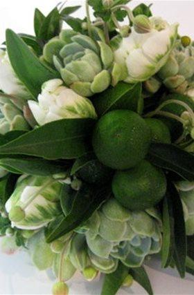 tulips & limes