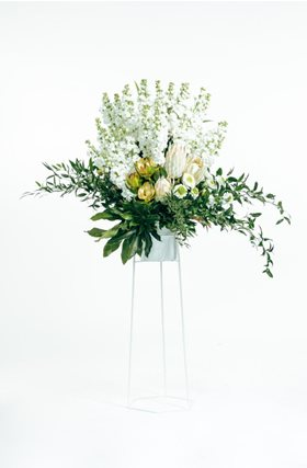 NZ Flowers Week Promotion 2016