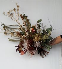 fleurs sechees - dried flowers