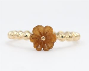 Tigers eye flower