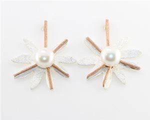 White Pearl Daisy