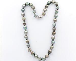 Silver black South sea pearls