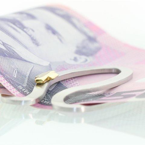 Oval Money Clip