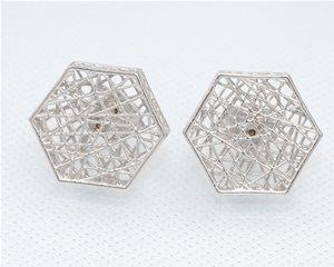 White Hexagonal web