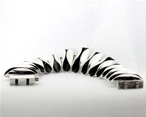 Black and Silver Scallop